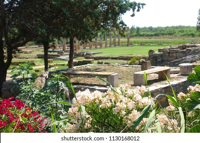 Photo from iconic Temple of Artemis in archaeological site of Vravrona or Brauron with beautiful flowers at blossom, Attica, Greece