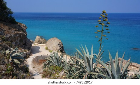 Photo from Ixia seaside village near town of Rhodes island, Dodecanese, Greece