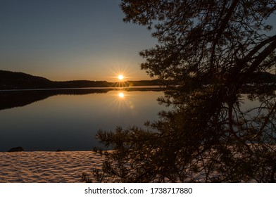 photo of a lake at sunset, with a tree partially blocking the  view