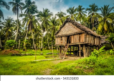 Photo of large house made of straw and bamboo in Palembe, Sepik river in Papua New Guinea. In this region, one can only meet people from isolated local tribes.