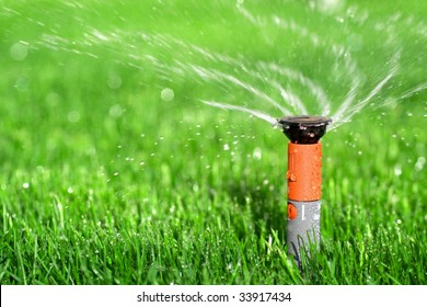 Photo of a Lawn Sprinkler