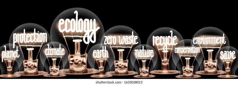 Photo of light bulb group with shining fibers in a shape of Ecology, Protection, Zero Waste and Recycle concept related words isolated on black background