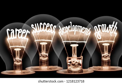 Photo of light bulb with shining fibers in shapes of CAREER , SUCCESS, DEVELOPMENT, GROWTH concept words isolated on black background