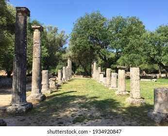 Photo made in Ancient Olympia, birthplace of Olympic games. Pillars, trees and olive branch. Date of photo is 28.04.2018