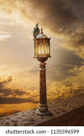 Photo manipulation.Street light against the sunset light