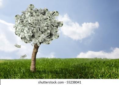photo of money tree made of dollars
