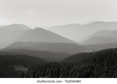 Photo of the mountains and trees east of Timberline Lodge on Mount Hood.  (Timberline Lodge is  owned by the U.S. National Park Service - it is not under copyright)