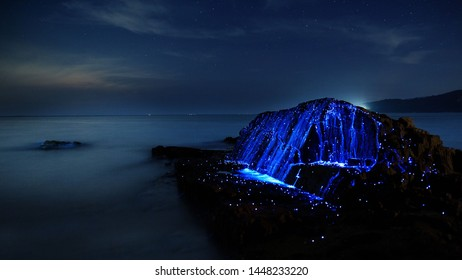 photo of the ocean where there is a Glow plankton's in the water, making blue light