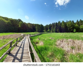 Photo on Saturday 6 June 2020 Location Kortright Centre for Conservation 9550 Pine Valley Dr, Woodbridge, ON L4L 1A6  CANADA  Is a long wooden bridge crossing the swamp with grass growing up the swamp