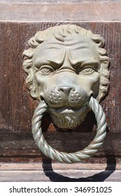 Photo Picture of lion's head on an wooden door