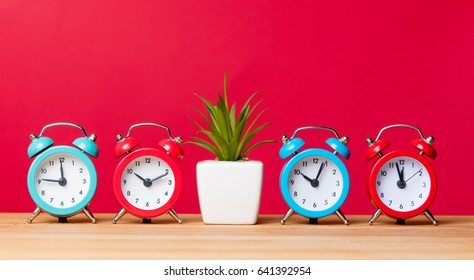 photo of plant in pot and alarm clocks on the wonderful pink studio background