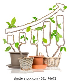 Photo of plants growing from pots forming arrow isolated on white