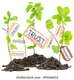 Photo of plants growing from soil heaps with TRUST conceptual words written on paper cards