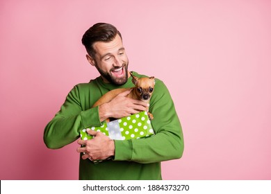 Photo portrait of happy cheerful man keeping present box with little dog pet smiling laughing isolated pastel pink color background