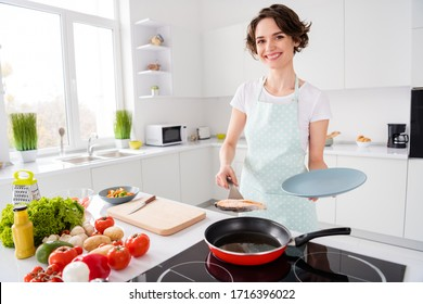 Photo of pretty housewife lady put grilled salmon trout fillet steak flying pan on plate ready roasted condition cook family dinner wear apron t-shirt stand modern kitchen indoors - Shutterstock ID 1716396022