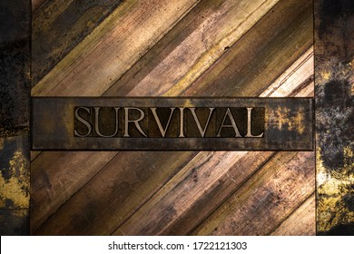 Photo of real authentic typeset letters Survival text on vintage textured grunge copper and gold background