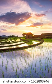 photo reflection of rice field views with sloping terraces. sky reflection in the water with beautiful sky light