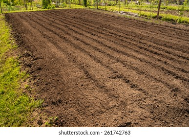 Photo represents recently tilled dirt in preparation for planting the garden.