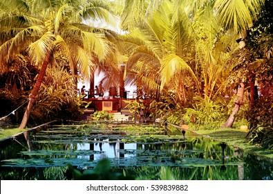 Photo retro tropical paradise garden with pond