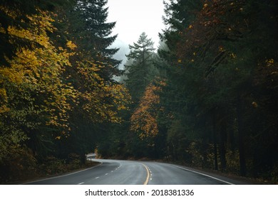 Photo of the road 58 on Oregon state at autumn
