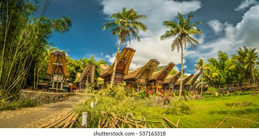 Photo of row of tongkonans surrounded by palms and greenery in Kete Kesu, Toraja region in Sulawesi, Indonesia.