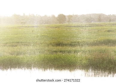 a photo of rural meadow landscape,retro style