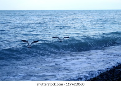 Photo of the sea bright beautiful landscape with waves illuminated by the sun