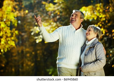 Photo of senior couple in the park in autumn