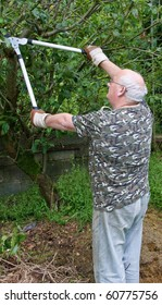photo senior male cutting trimming tree branches outside