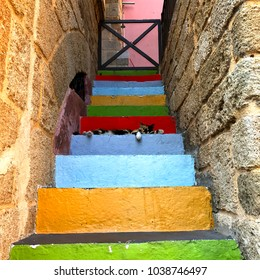 Photo shoot of an old house entrance, made of colorful stone steps.