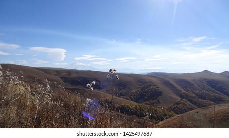 The photo shows the nature of the Caucasus - Small Karachay. In a word lanshaft Caucasus. And forests, and mountains, and plains.