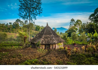Photo of simple village house and its garden in mountainous region in Sara village, Mt. Michael in Papua New Guinea.