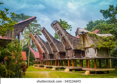 Photo of six tongkonans, large ancestral houses, typical of boat-shaped and large saddleback roofs and colourful patterns in Sangalla, Toraja region in southern Sulawesi, Indonesia.  .