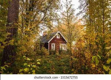 Photo of a small, red cabin in Sweden. The forest around it is dressed in autumn colours.