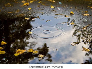 Photo of soap bubble over puddle.  Autumn, morning, cold.