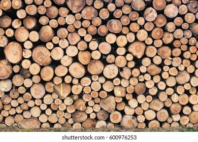 Photo of a stack of natural wooden logs