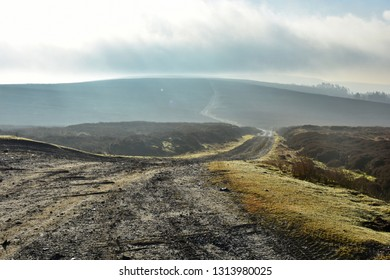 Photo of the start of Rutland Rigg taken at Bloworth Crossing in the North York Moors, England. Photo taken early in the year on a cloudy morning.