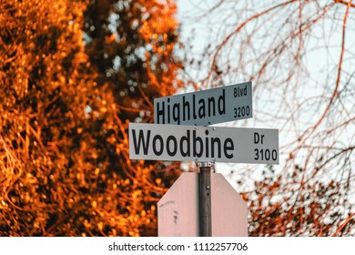 Photo of Street Signs of Highland Boulevard and Woodbine Drive in North Vancouver, BC, Canada