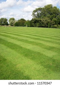 Photo of a striped lawn garden with trees in the distance