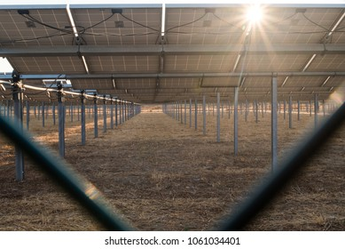 A photo of a sunburst coming through the solar racks/panels at a solar farm south of Sacramento off I-5.  Solar power constituted about 10% of California's electricity in 2016, and is rapidly growing.