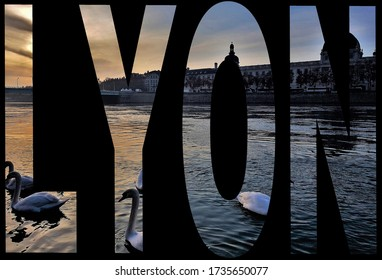 Photo of Swans on the Rhone River in Lyon Within the Letters of the City Name