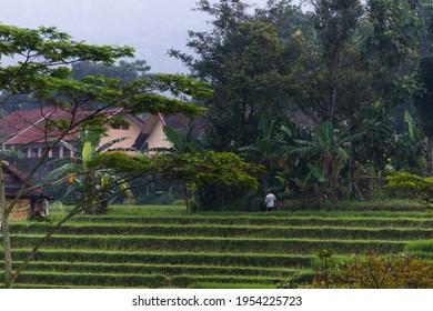 Photo taken in the corner of Indonesian trawas village - Shutterstock ID 1954225723