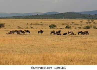 Photo taken in Kenya