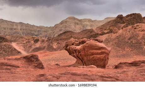photo taken in southern Israel in the winter of 2020 in the Timna National Reserve