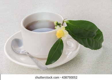"Photo of the tea varieties Camellia sinensis,"" in a white ceramic bowl and a sprig of tea ""Camellia sinensis"""