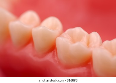 Photo of Teeth