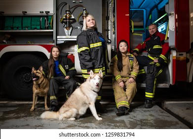 Photo of three firewomen,fireman and dog on background of fire truck