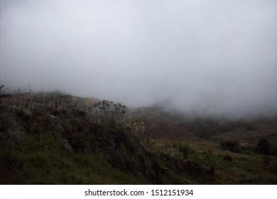 """photo tomada en el """"Páramo la Culata"""", en el corazón de la Sierra Nevada de Mérida, Venezuela."""