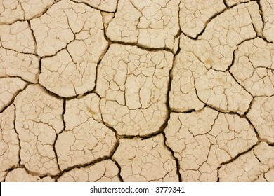 Photo took to the ground in a dry terrain. The land is cracked due the lack of water.
