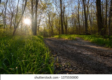 Photo of a Trail in Missouri at Dawn